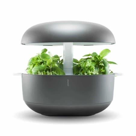 Plantui - Smart Garden -  3 COULEURS AU CHOIX-  Livraison OFFERTE