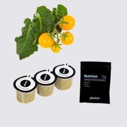 Capsules Plantui - Tomates cerise