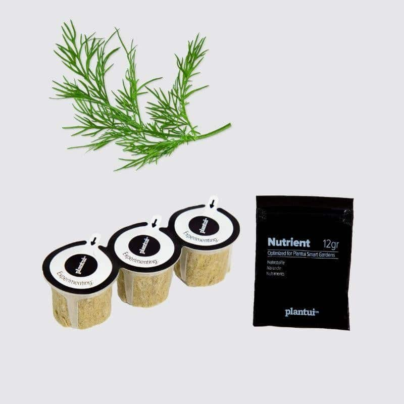Capsules Plantui - Herbes aromatiques - Aneth - procouteaux