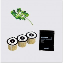 Capsules Plantui - Cresson - procouteaux